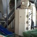 Mandelschälanlage Fabrikat BAUERMEISTER Type BF-250/MSCH-450